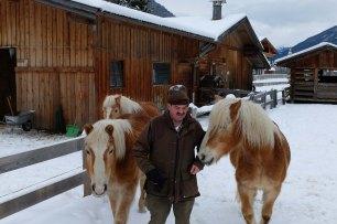 Fun horses along the way