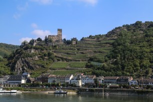 Beautiful Rhine Country